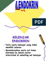 Slide Anfisman Endokrin