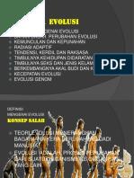 p 5 Pola Pola Evolusi