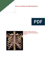 Fisiología del buceo en relación al medio hiperbárico