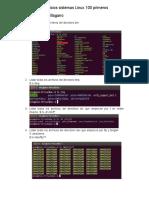 Ejercicios Sistemas Linux 100 Primeros