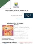 g Fisiopatologia Hepatica