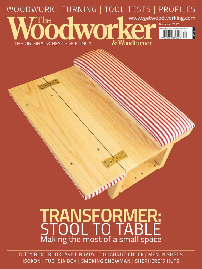 The Woodworker Woodturner-January 2018 | Knife | Paint