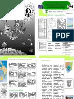 Revista de Ambiental1
