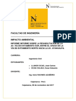 Informe-impacto ambiental
