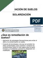 Diapositivas Remediacion de Suelos