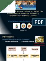 3-Wilfrido Argüello