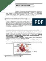 7. Aparato Cardiovascular (2)