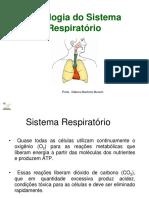 Aula 170516 Sistema Respiratorio D