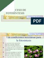 Fotosintesis.ppt