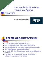 NATURA_Organizacion_MPE_ZAMORA.ppt