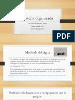 PerezCamacho MarcoAurelio M14S1 Materia Organizada