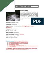 Informacion Proyectos Hidroelectricos BOLIVIA (1)