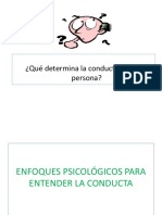 Enfoques Psicologicos