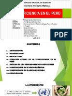 Ecoeficiencia en el Perú