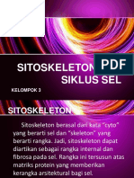Sitoskeleton Dan Siklus Sel