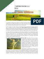 Los Siete Médicos de La Naturaleza