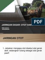OTOT & SARAF