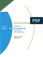 Manual Pincel