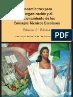 4 lineamientoscte.pdf