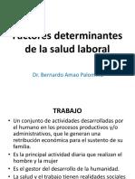 Factores Determinantes de La Salud Laboral