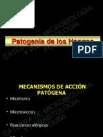 patogenia micotica.pdf