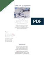 Poezii Despre Iarna Bacovia