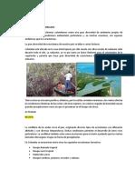 Guia Ecosistemas Terrestres Colombianos