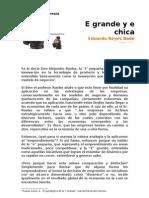 Paper - la E grande y la E pequeña - Eduardo Reyes