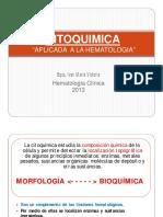 1702553059.CITOQUIMICA.pdf