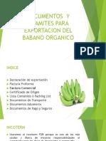 DOCUMENTOS  Y TRAMITES PARA EXPORTACION DEL BABANO ORGANICO.pptx