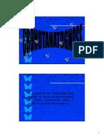 BGF EntomologiaII Aula Cadaver