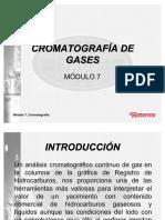 57414559-Modulo-7-CROMATOGRAFIA-DE-GASES.pdf
