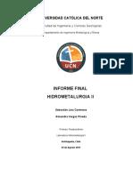 Informe Final Hidrometalurgia 2
