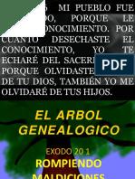 El Arbol Genealogico SILOE