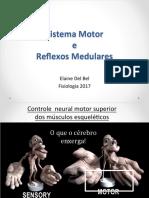 2017-Motor e Reflexos Medulares