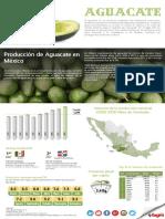 Infografía del Aguacate