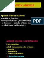(13) Aplastic Anemia