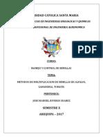 Multiplicacion de Semillas Manuel