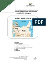 Perfil Pais Rusia