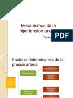 mecanismosdelahipertensionarterial-140806001121-phpapp01