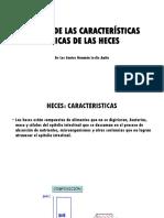 Origen de Las Características Físicas de Las Heces