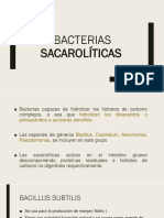 Bacterias Sacaroliìticas