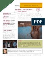Energy in Common - GSBI 2010 - Factsheet