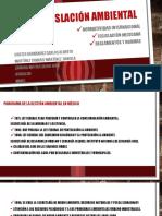 08 Normas y Leyes Ambientales.
