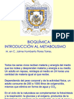 Introduccion Al Metabolismo