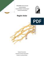 Resumen Region Axilar