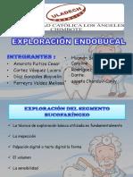 EXPLORACIÓN ENDOBUCAL