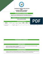 Programa Intervencion Psicopedagogica II Para Imprimir