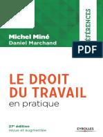 Droit Du Travail en Pratique (cameroun)