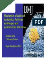 Modul Biology Molecular, Resistance to Antibiotics Unpar12 [